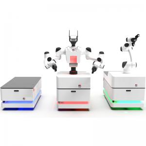AMR solutions with dual-arm collaborative mobile robots